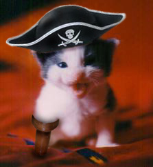 piratekitty